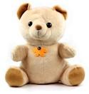 30 Dagen Teddy Beer Babysitter Camera